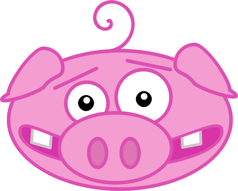Funny Pig Face.