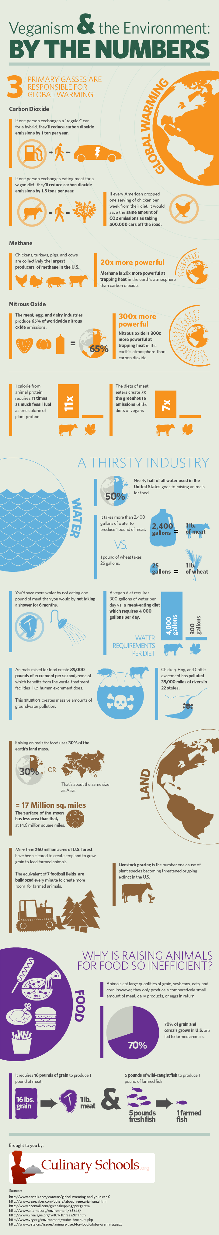 Infographic Veganism by the numbers.
