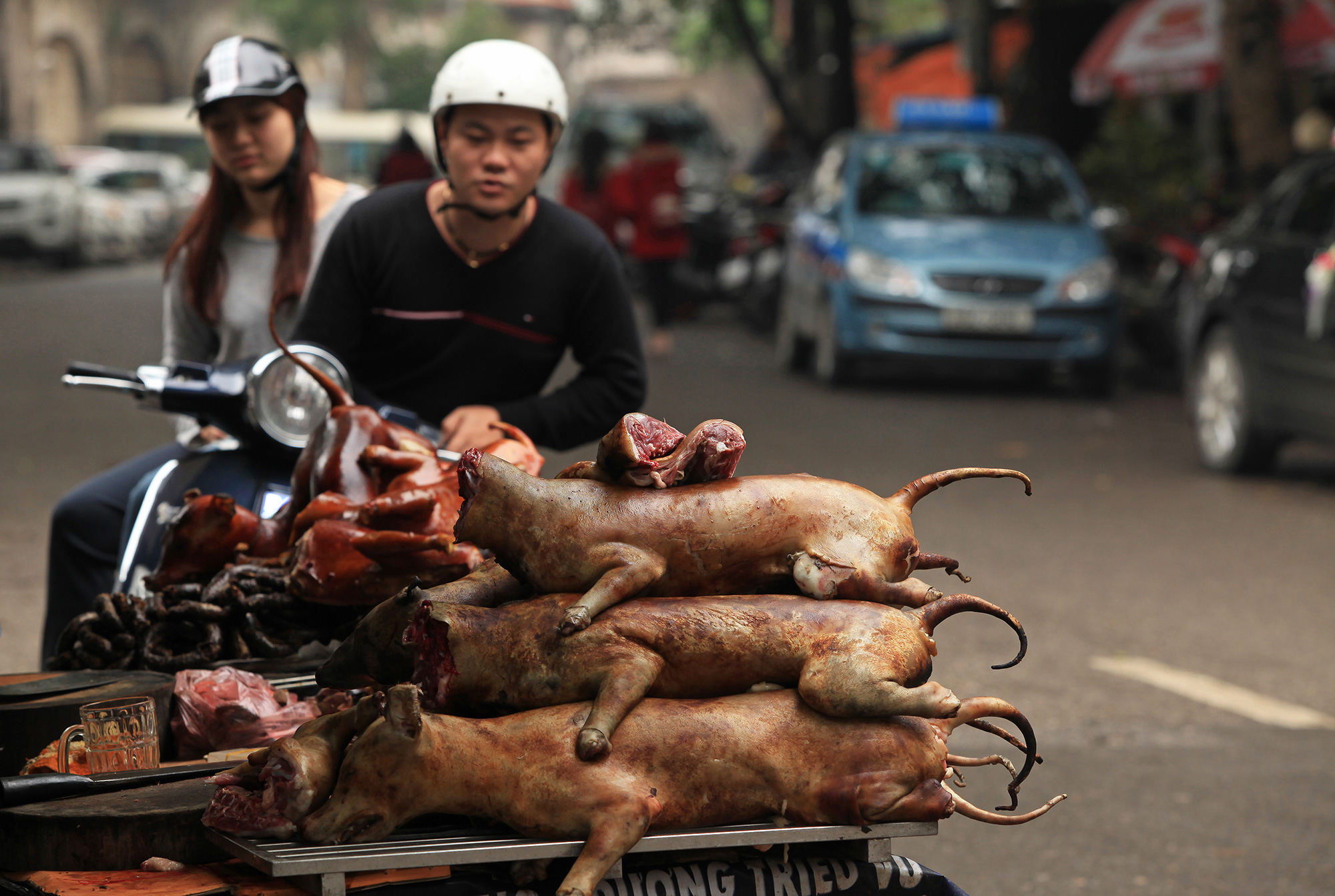 Vietnam Dog Meat Merchant
